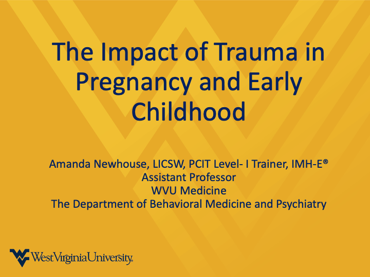 a snapshot of the THE IMPACT OF TRAUMA IN PREGNANCY AND EARLY CHILDHOOD