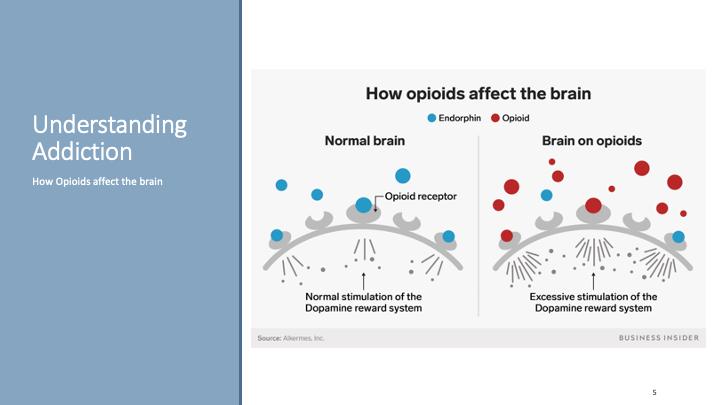 a snapshot of the Understanding Addiction video