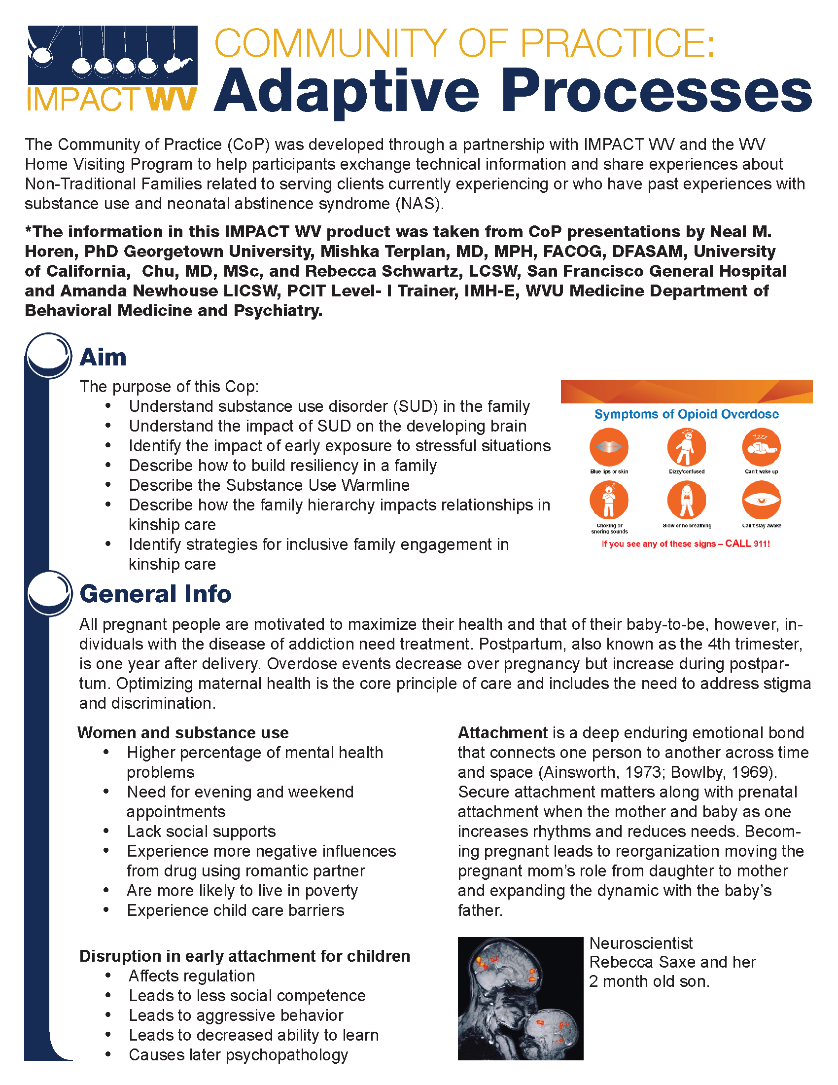 a snapshot of the Adaptive Process To Meet High Risk Families' Needs Summary Sheet (PDF)
